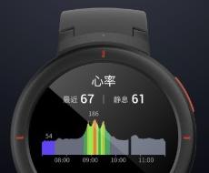 Xiaomi Amazfit Verge šedá